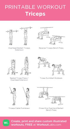 Triceps Workout, Tricep Workout Women, Chest And Tricep Workout, Chest Workout Women, Fitness Workout For Women, Shoulder Workout, Workout Men, Bi Workout, Cycling Workout
