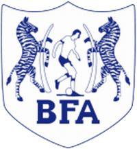 Shirt badge/Association crest Football Team Logos, Soccer Logo, National Football Teams, Football Soccer, Fifa, Zebras, Badges, International Football, Soccer World