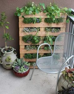 Increase growing space on a tiny balcony with this DIY pallet garden. Increase growing space on a tiny balcony with this DIY pallet garden. Organic Gardening, Gardening Tips, Urban Gardening, Gardening Courses, Apartment Patio Gardens, Apartment Plants, Apartment Backyard, Apartment Living, Vertical Gardens