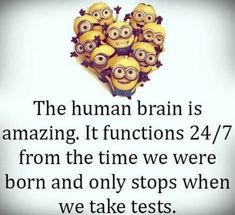 Top 25 Funny Minions Memes
