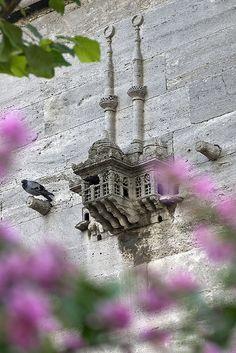 Kuş Evi Yeni Valide Camii,Üsküdar,İstanbul By Ayhan Altun