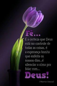 ✿⊱❥ Fé... é a certeza que Deus está no controle de todas as coisas, é a esperança bonita que enfeita os nossos dias... é silenciar a alma pra falar com Deus!