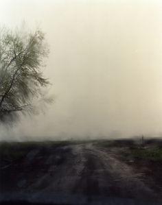 Bruce Silverstein Gallery - Todd Hido: Landscapes