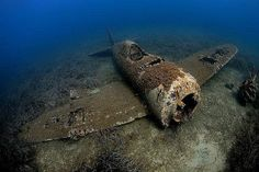 Más pecios en Normandía. Shermans que iban en un buque de carga hundido.