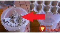 Táto mamička kartóny od vajec nevyhadzuje, ale každý natrhá a zaleje vodou: Neuveríte, čo z toho vznikne o pár hodín! Candles In Fireplace, Paper Weaving, Recycling, Ice Cream, Handmade, Home Decor, Boxes, Tips, Christmas