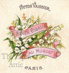 Antique-Vtg-French-Paris-Soap-Label-Savon-Olgalia-au-Muguet-Lily-of-the-Valley