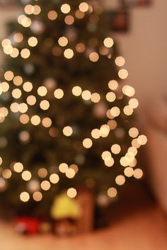 This makes me think of nights with my big brother when we would sleep by the Christmas tree. I miss him.