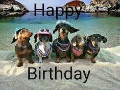 Image result for happy birthday friend meme #happybirthdayquotes