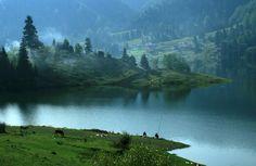 Colibita Lake, Bistrita Nasaud, Romania