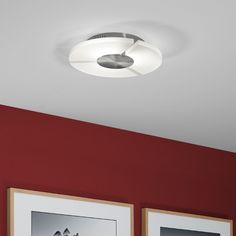 Helestra Rika Ceiling Light