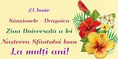 24 Iunie Sânzienele - Drăgaica Ziua Universală a Iei Naşterea Sfântului Ioan La mulți ani!