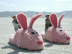 Bunny slipper cars!!!