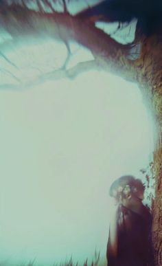 ☽ Dream Within a Dream ☾ Misty Blurred Art & Photography -