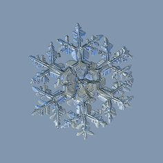 Picture of snowflake with glossy relief surface and complex structure, massive, ornate arms and hexagonal center, divided by six sectors. This image based on macro photograph of real snow crystal. Sweets Photography, Sea Photography, Snowflake Photos, Snowflakes, Snow And Ice, Abstract Photos, Light Painting, Crystals Minerals, Pictures To Paint