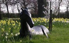 A rare bronze statue of a horse lying down in a field, estimated to be worth has been stolen. Paper Mache Sculpture, Horse Sculpture, Garden Sculpture, Sculptures, Elisabeth Frink, Body Figure, Zebras, Art Forms, 3 D