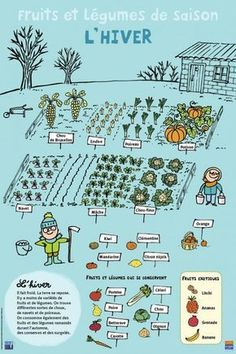 Fruits et légumes - Hiver Potager Bio, Potager Garden, Winter Fruits And Vegetables, French Lessons, Teaching French, Plantation, Learn French, French Language, Garden Planning