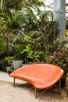 La déco d'intérieur consiste de plusieurs éléments : couleurs, meubles et éclairage mais on oublie souvent la plante verte d'intérieur