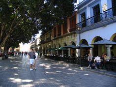 El Zócalo de la ciudad de Oaxaca de Juárez está constituido por una gran variedad de comercios ubicados a los costados, entre los que destacan restaurantes de comida regional, servicios de tours y agencias de viajes. También en este lugar se realizan eventos culturales y de espectáculos.