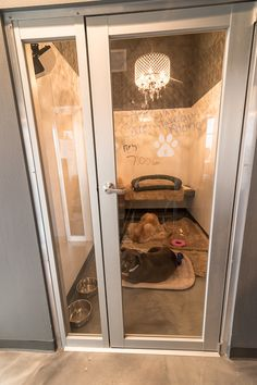 Tips For Choosing The Right Dog Boarding Services Dog Boarding Kennels, Pet Boarding, House Breaking Dogs, Luxury Dog Kennels, Dog Bedroom, Dog Kennel Designs, Puppy Room, Cat Hotel, Pet Resort