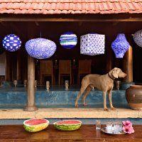 Des lampions de papier peint en bleu indigo