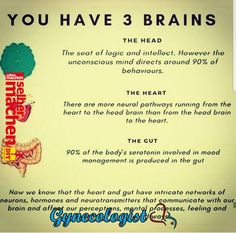 Brain, Gut and Healthy mind Brain Health, Gut Health, Health And Nutrition, Health And Wellness, Health Tips, Health Fitness, Mental Health, Gut Brain, Brain Food