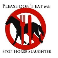IKEA, Taco Bell, and Burger King: Keep horses out of our food!