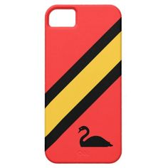 Modern colorful iPhone 5/5S case