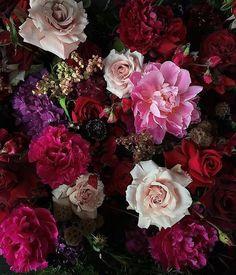 peonies + hydrangea + hops + sweetpea + roses +scabiosa ✨ #myviolet