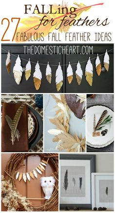 Feathers are a perfect way to add fall flair to your decor. Round up of fabulous fall feather ideas from TheDomesticHeart.com