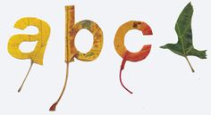 Leaves Typography