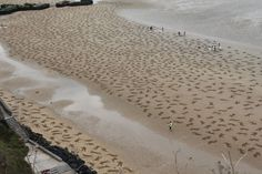 9,000 sand drawings commemorate the fallen on d-day designboom