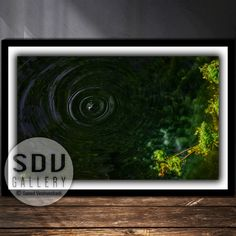 Downloadable image, digital photo, printable wall art, pond, tree, forest, algae, water, nature, drops, branch, spring, Vienna, Austria Water Photography, Photo Tree, Landscape Photos, Nature Photos, Printable Wall Art, Digital Art, Printables, Tree Forest, Vienna Austria