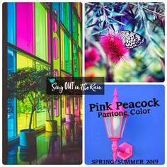 Pink Peacock is a tantalizingly theatrical pink designated by Pantone as one of the Spring/Summer 2019 Color Trends. #pantone #colortrends