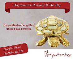 As tortoise is gifted with long life therefore in Vastu Shastra and in Feng Shui it gives Long Healthy Life. As in Puranas, Lord Vishnu took the form of tortoise to uphold the earth and its beings during the Sagar Manthan; Lord Vishnu's Tortoise is second avatar and is called as Kurma avatar.