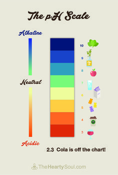 Where Do The Foods You Love Fall On the pH Scale?