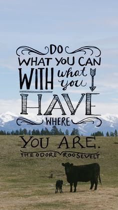 do what you can, with what you have, where you are | eleanor roosevelt