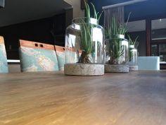 Aloes in stone vases @Nicky Day.net Stone, House, Stone Vase, Beautiful Homes, Stoop, Vase