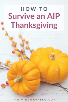 Tips to survive – and enjoy – an AIP Thanksgiving: like avoiding temptation, traveling, how to eat over friends' and family's' houses, having company, and even some AIP Thanksgiving recipes to make!