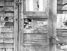 Dorothea LANGE,  my favorite photographer! :: kids in Rural shacktown, ca. 1935