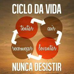 #motivacionais #nunca #desista