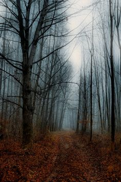 .nice and spooky lets find out where it goes............