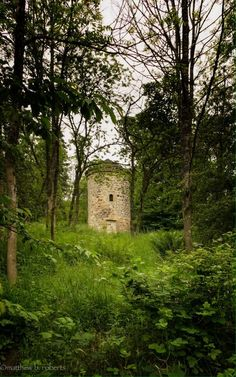 """@TheMattBRoberts : Broch Tuarach?    """"An ancient cylinder of stone that poked up from the hillside behind the manor house.The people that lived on the estate called it """"Lallybroch."""" Which meant """"lazy tower,""""which made as much sense as """"North-facing tower"""" for a cylindrical structure.""""  quote from Drafonfly in Amber"""