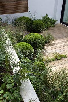 Kensington garden by Landform Consultants