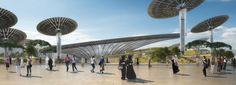 Dubai Expo 2020 Sustainability Pavilion   Grimshaw Architects - Arch2O.com