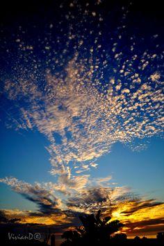 ~~Clouds by Vivian D~~