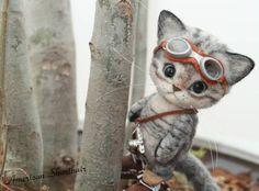 Needle felt cat explorer - so cute!