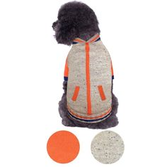 Blueberry Pet 2 Patterns Weekender Sports Baseball Jacket Style Pullover Dog Sweater * Find out more about the great product at the image link. (This is an affiliate link and I receive a commission for the sales) Winter Chic, Winter Hats, Fall Winter, Winter Jackets, Pet Dogs, Pets, Dog Sweaters, Sports Baseball, Cool Tones