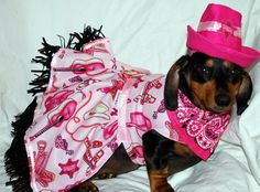 Sammie Git Your Gun Cowgirl 3 piece outfit by DownUnderDogDesigns, $50.00