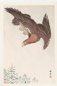 Original woodblock print.Japan, 1900/10 OHARA Shoson (koson) 1877 - 1945 Flying Eagle snowfall. Original color woodcut. Signature: Shoson. Seal: Shoson. Excellent in print and color, first edition 1931, reprint of the original printing plates (Atozuri, of ato = later or after and suri = pressure) after 1989. Size: approx 39 x 25.9 cm. Publisher: Watanabe (round publisher's seal bottom left, right on the edge Watanabe Heisei seal). First edition 1931