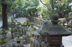 Nara, Japón. Luces para el camino al templo.